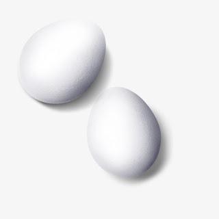 صور صور بيض 2019 احلى اشكال البيض للاطفال 155780a7184b6dc.jpg