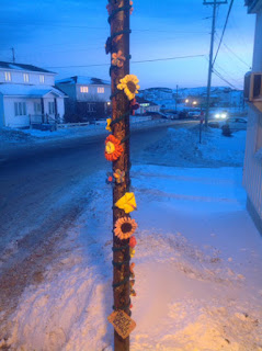 knitted yarn vine with colourful flowers attached to a wooden utilty pole on the side of a snow covered street with homes and a car in the bcakground
