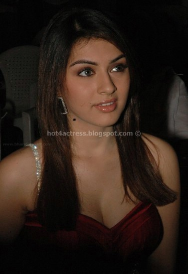 Hansika motwani hot photo gallary