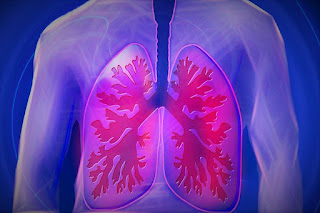 HOW TO CLEANSE YOUR LUNGS NATURALLY 1