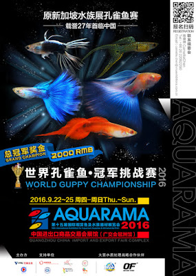 http://www.aquarama.com.cn/en/competitions/guppy-competition/