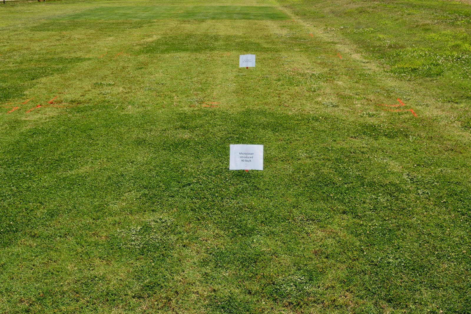 Bmps To Reduce Runoff And Fertilizer Use In Lawns