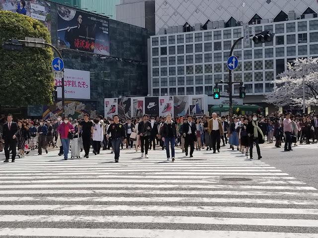 Shibuya Crossing, Cruce, Scramble Crossing, Cruce Revuelto, Shibuya, Paso de Cebra, Hachiko, Tokio, Tokyo, Japon, Japan, Visit Japan, Elisa N, Blog de Viajes, Lifestyle, Travel, Shibuya 109, Forever 21