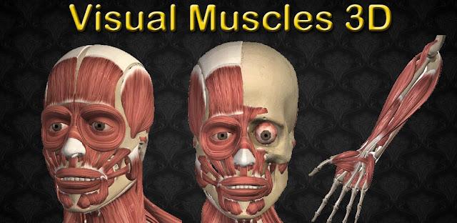 برنامج Visual Muscles 3D للأندرويد