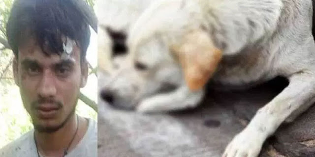SHOCKING: This Indian Man Killed And Raped A Dog