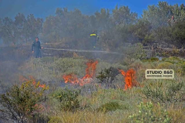 Φωτιά σε αγροτική έκταση στα Φίχτια Αργολίδας