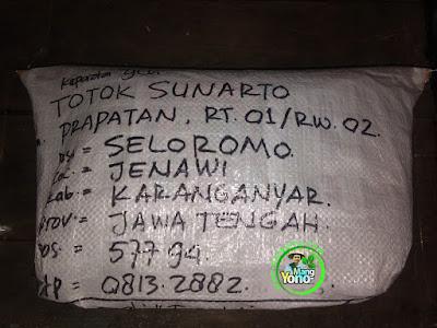 Benih pesana    TOTOK S Karanganyar, Jateng   (Sesudah Packing)