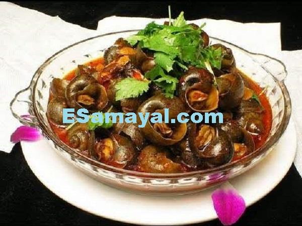 நத்தை கிரேவி - Snail Gravy