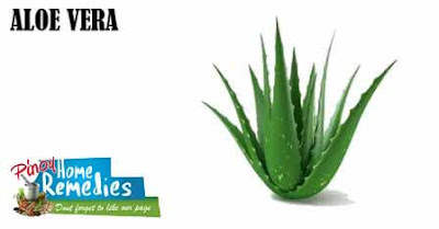 Home Remedies For Puffy Eyes: Aloe Vera