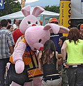 Duracell, conejo, bunny, cachap, conill, rabbit, Hase, Kaninchen