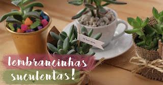 Buy Cactus Succulents Plants Online In Delhi
