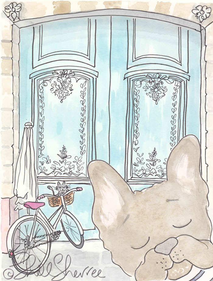 Paris Aqua Doors, Cycling Kitty and French Bulldog illustration © Shell Sherree