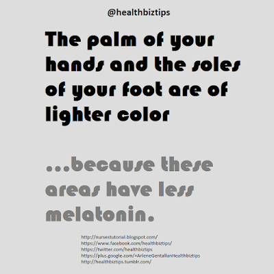 The palm of your hands and the soles of your foot are of lighter color...because these areas have less melatonin.