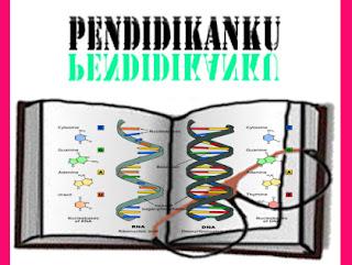Pengertian DNA Dan RNA Serta Perbedaannya