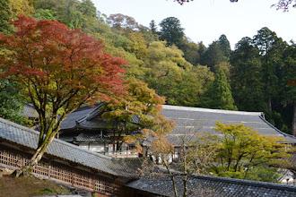 Lima Spot Liburan Musim Gugur di Jepang