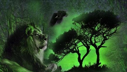 Edgar Rice Burroughs - Tarzan és az őrült könyvértékelés