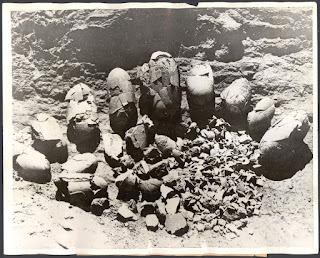 Fósiles de huevos de dinosaurios hallados por Roy Chapman Andrews