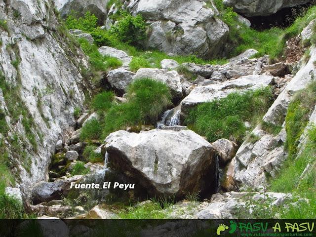 Fuente el Peyu en Trea