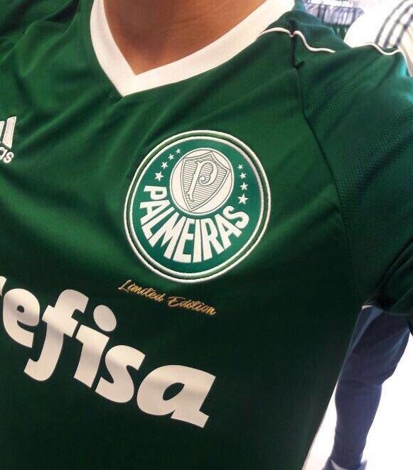 Nova camisa do Palmeiras tem imagem vazada - Show de Camisas a821892bb544f
