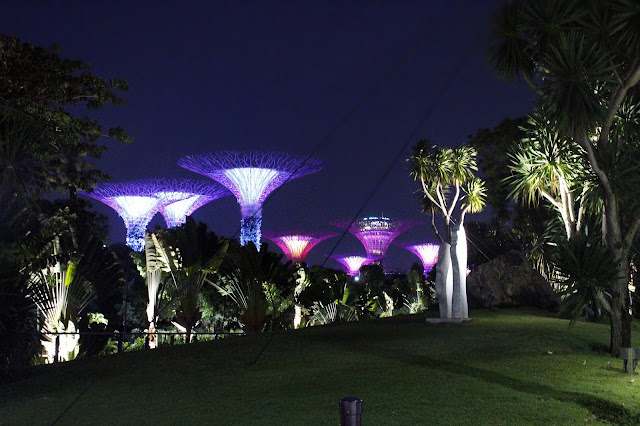 Foto Garden by the Bay Singapore