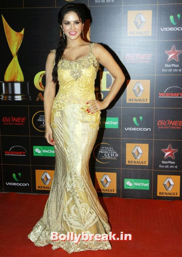 Sunny Leone, Star Guild Awards 2014 Pictures