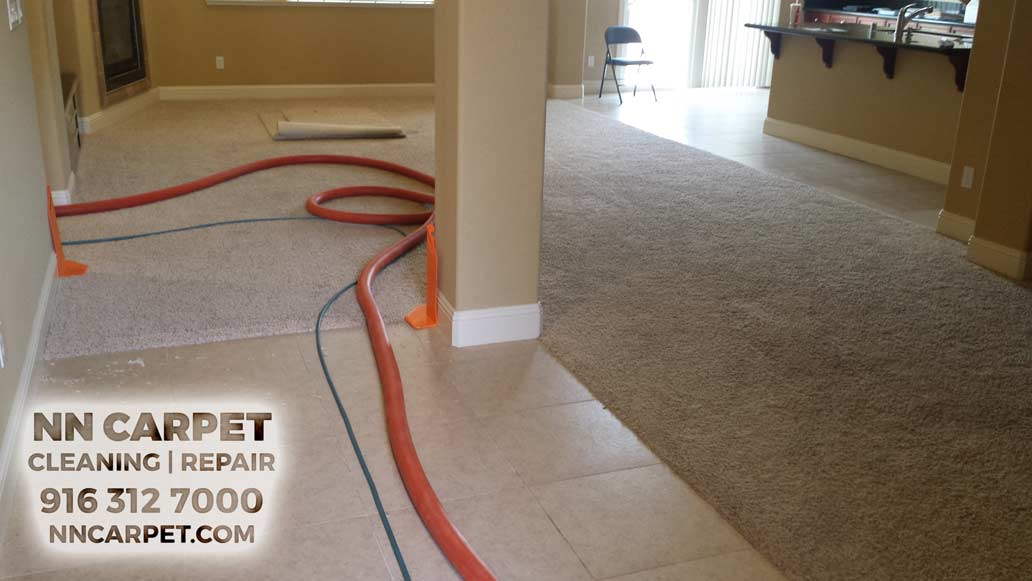 Carpet Cleaners Folsom  Carpet cleaning Folsom CA - Professional Whole House Carpet cleaning Services