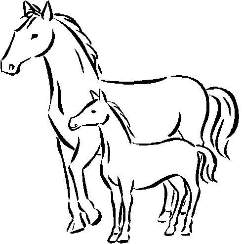 Tranh tô màu ngựa mẹ đứng cạnh ngựa con