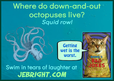 Where do down-and-out octopuses live? Squid row! Swim in tears of laughter at jebright.com. Bernie says: Getting wet is the worst.