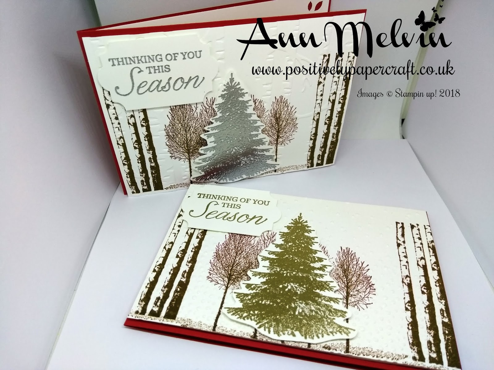 Positively Papercraft My First Christmas Card Using Winter Woods