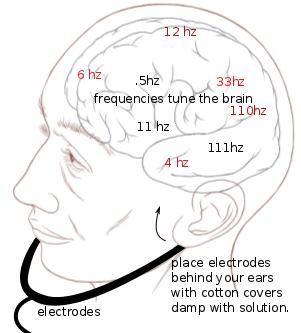 Brain Tuner, Bio Tuner