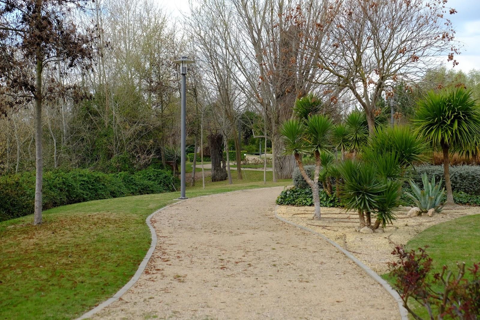 El autillo digital for Actividades en el jardin botanico de caguas