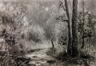 Charcoal sketching of scene from Karnala Bird Sanctuary
