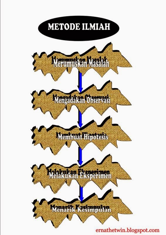 Urutan Metode Ilmiah : urutan, metode, ilmiah, Ernathetwin:, Metode, Ilmiah