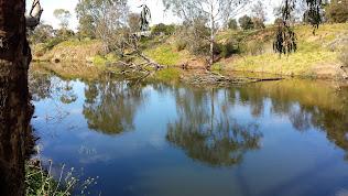 Wirribi River Walk, Werribee Zoo