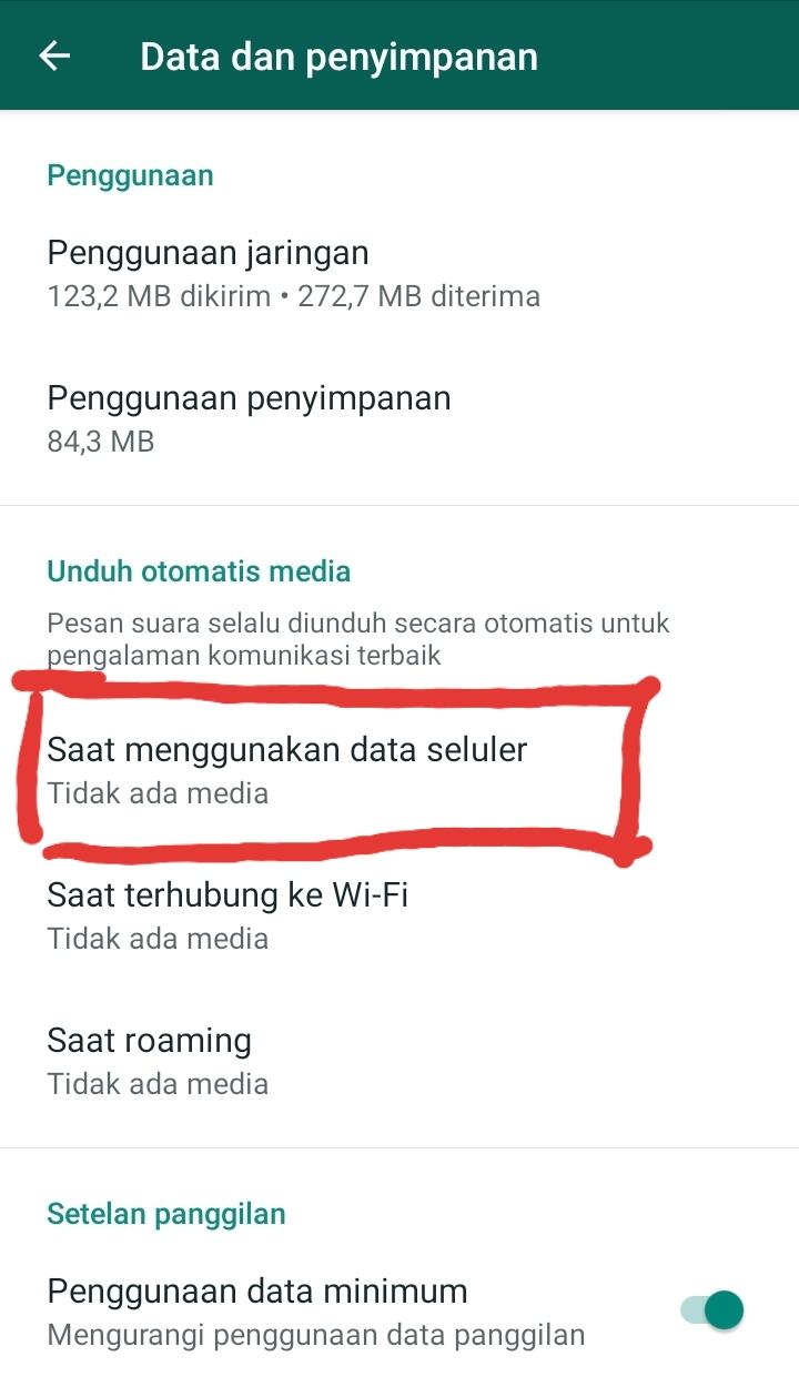 whatsapp otomatis download gambar