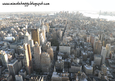 Vistas desde el Empire State de Downtown NY