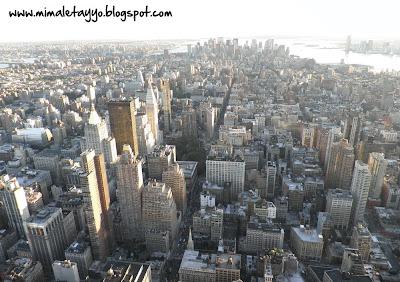 Vistas desde el Empire State de Downtown NY