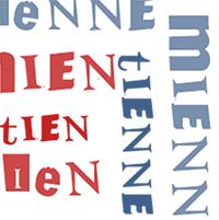 les pronoms possessifs en français, grammaire, fle