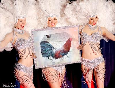 gallo con mujeres bailando
