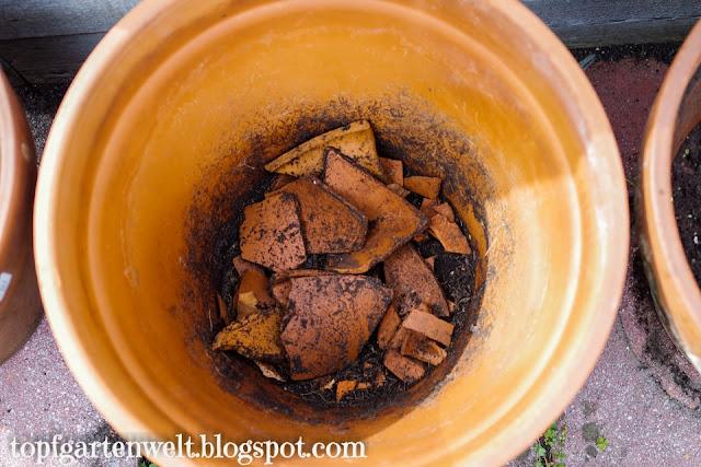 Drainage für Kartoffeln im Topf anbauen - Gartenblog Topfgartenwelt