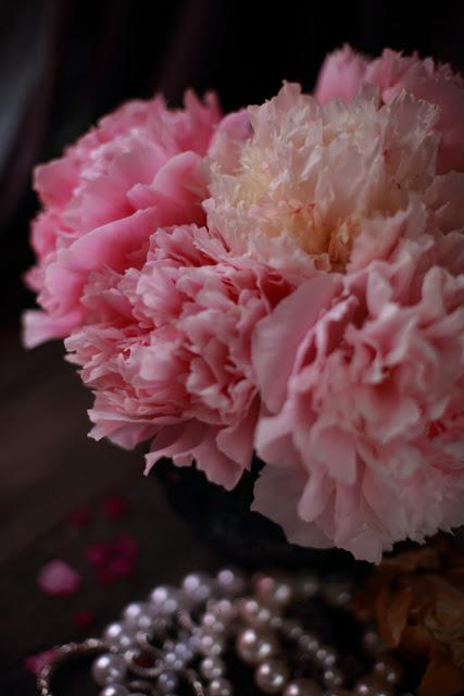 pioni, peony, still life flowers