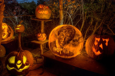 seven carved pumkins with differend designs one with a picture of harry potter