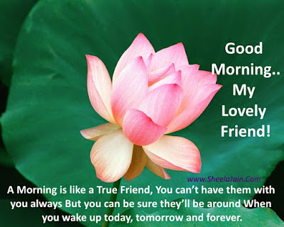 Good Morning Quotes For Best Friend: good morning, my lovely friend!