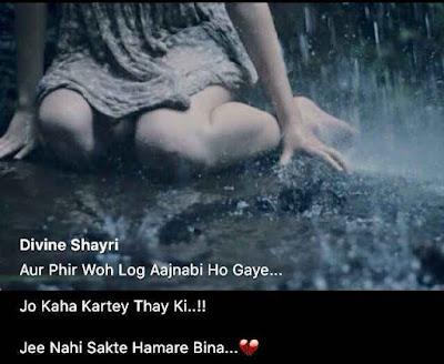 Dear Diary - Aur Phir Woh Log Ajnabi Ho Gaye Jo Kaha Kartey Thak Ki ..!! Jee Nahi Sakte Hamara Bina ...