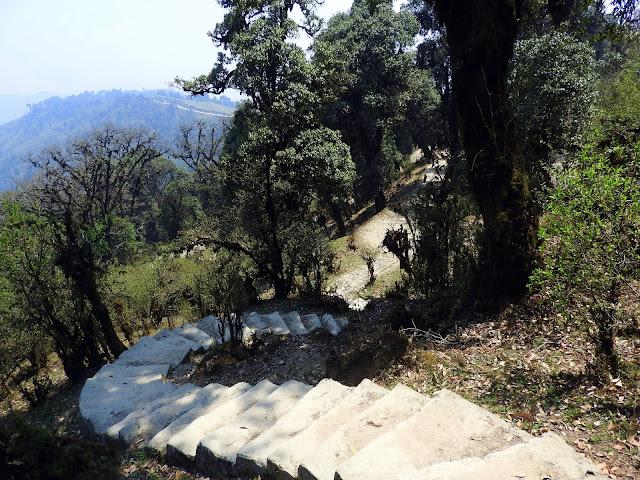One of many 'Po' moments during the trek, courtesy steps | Sandakphu April 2016