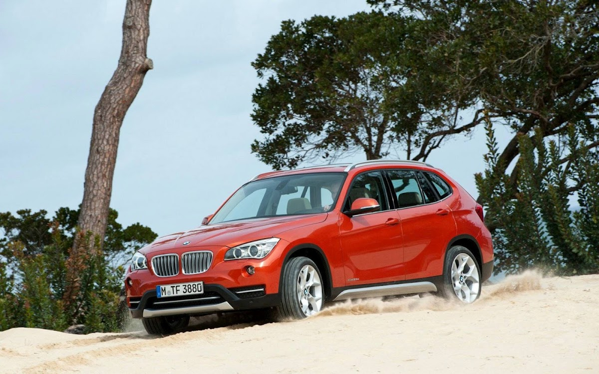 2013 BMW X1 Widescreen HD Wallpaper 5