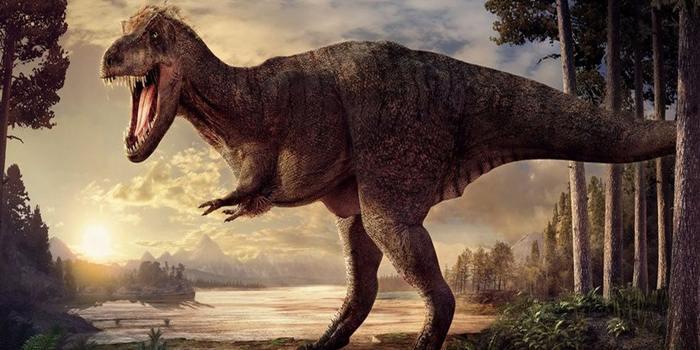 Ternyata T Rex Tidak Bisa Lari Cepat Loh ..