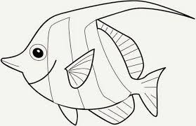 ikan dorang bisa senyum juga