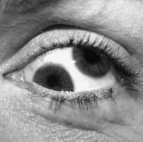 blog oficial. www.jacareiencantado.Marquinho.Seita Católica .falsas.verdadeiras,astrólogo.bruxo vidente,photoshop,Santuário das aparições de   jacareí SP.