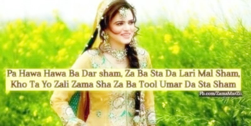 love pashto sms pictures